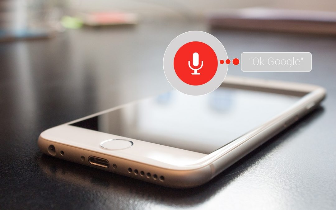 How is the Growth of Voice Search in 2018-19?