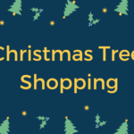 Quick Guide for Christmas Tree Shopping in holiday season